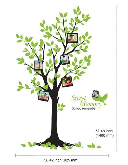 Big Photo Tree Adhesive WALL STICKER Removable Decal